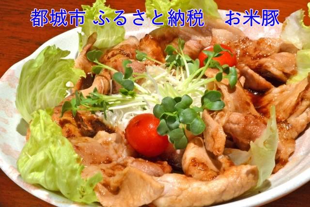 都城市「お米豚」ときめき3.7kgセット 楽天 ふるさと納税のレシピ・感想